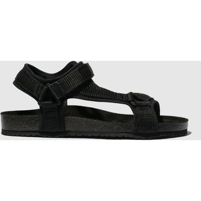 Schuh Black Motivate Sandals