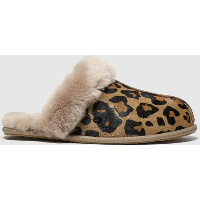 Ugg Brown & Black Scuffette Ii Slippers