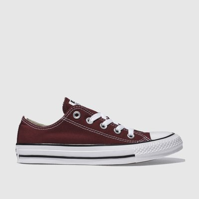 Converse Burgundy All Star Oxford Trainers