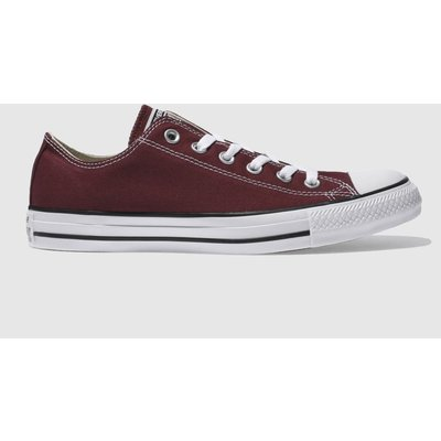 Converse Burgundy All Star Lo Trainers