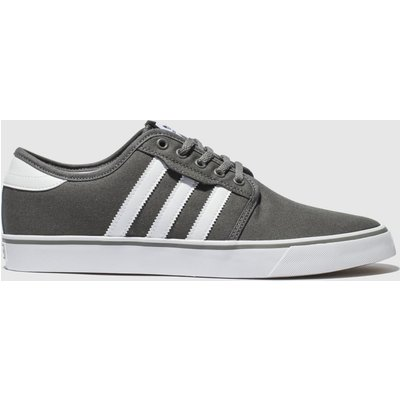 Adidas Skateboarding Grey Seeley Trainers
