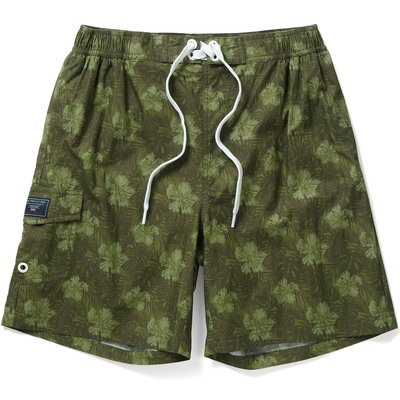 Men's Tog 24 Cove Mens Swimshorts, Green