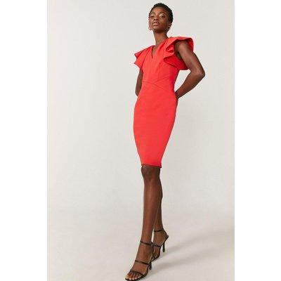 Coast Premium StructuRuffle Sleeve Shift Dress -, Red