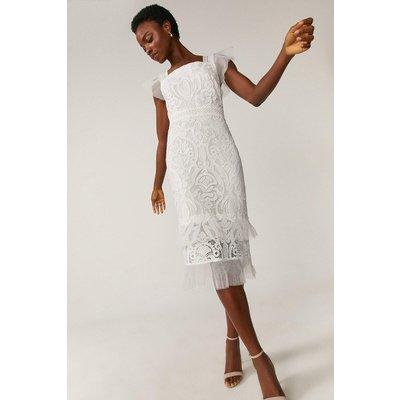 Coast Lace Cap Sleeve Midi Dress -, White