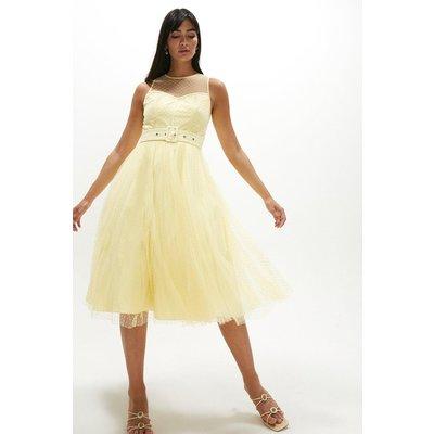 Coast Belted Polkadot Full Skirted Mesh Dress -, Bright Yellow