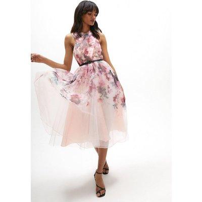 Coast Wrap Front Full Skirt Organza Dress -, Pink