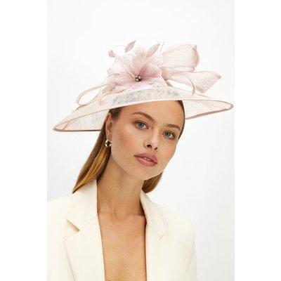 Coast Premium Crystal Detail Hat Fascinator -, Lilac