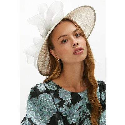 Coast Premium Organza Bow Hat Style Fascinator -, Grey