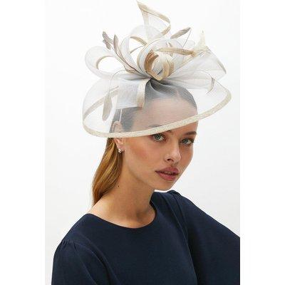 Coast Premium Bow Detail Hat Fascinator -, Silver