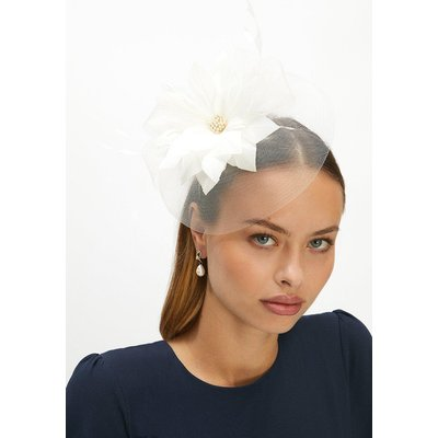 Coast Premium Organza Floral Fascinator -, White