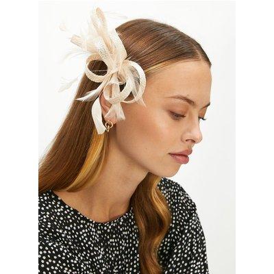Coast Premium Bow Feather Detail Fascinator -, Gold
