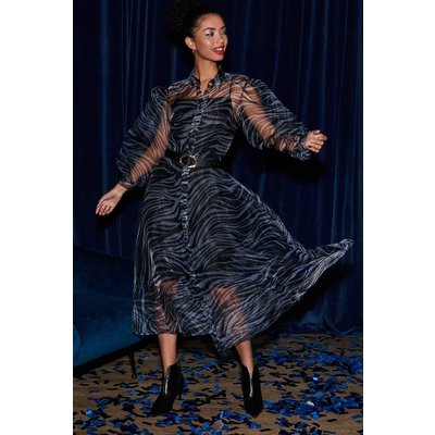 Coast Printed Organza Long Sleeve Dress, Zebra