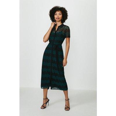 Coast Striped Mono Lace Shirt Dress -, Green
