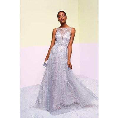 Coast Embellished Tulle Skirt Maxi Dress, Grey