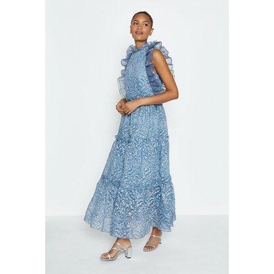 Coast Broidery Organza Maxi Dress, Blue