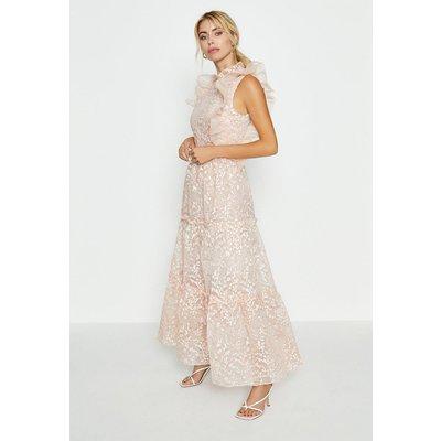 Coast Broidery Organza Maxi Dress, Pink