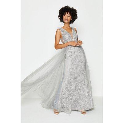 Coast Tulle Overskirt Maxi Dress, Silver