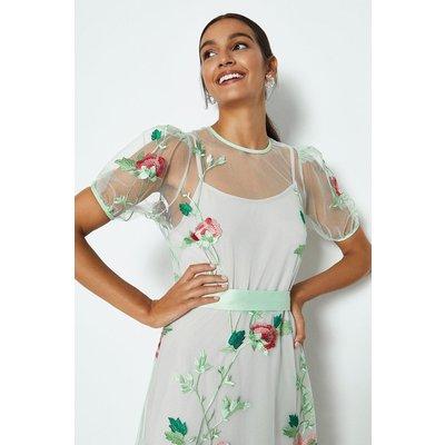 Coast Floral Embroidered Midi Dress Mint, Green