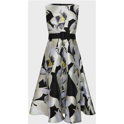 Coast Floral Clipped Jacquard Full Midi Dress, Multi