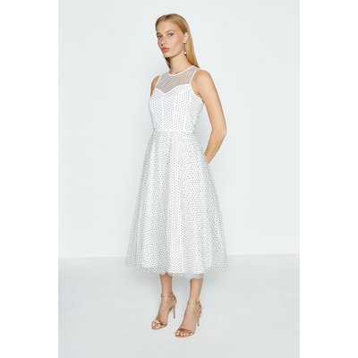 Coast Sleeveless PolkaDot Full Skirted Mesh Dress, Mono
