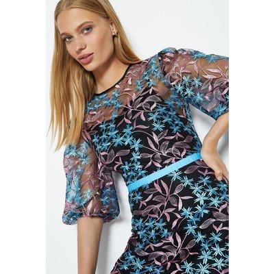Coast Puff Sleeve Embroidered Midi Dress, Pink