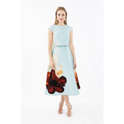 Cap Sleeved Full Skirted Shelf Dress Blue, Blue