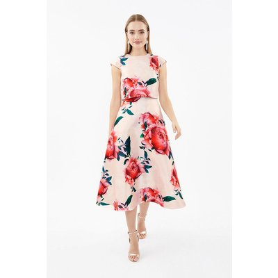 Coast Floral Cap Sleeve Full Skirted Shelf Dress, Natural