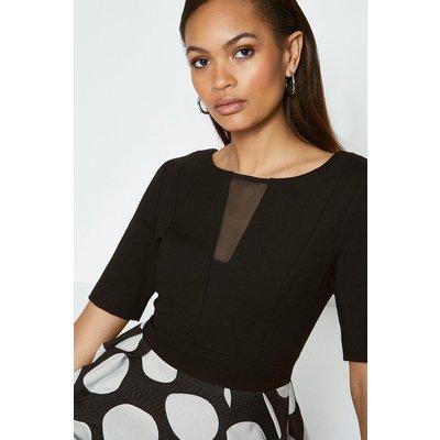 Coast Solid Bodice Spot Skirt Dress, Blackwhite