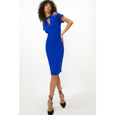 Coast Lace Cap Sleeve Shift Dress -, Blue