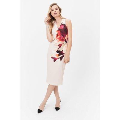 Floral Print Scuba Shift Dress Multi, Multi