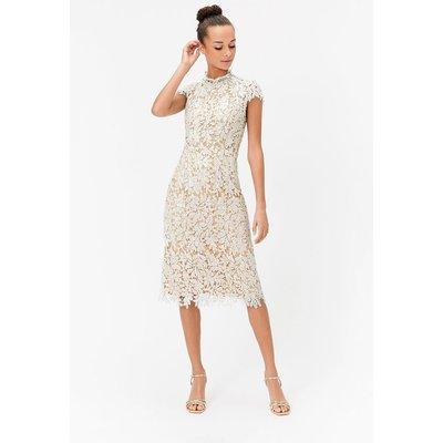 Lace Sequin Midi Dress Ivory, Ivory