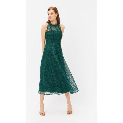 Embroidered High Neck Mesh Dress Green, Green