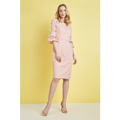 Lace Flute Sleeve Dress