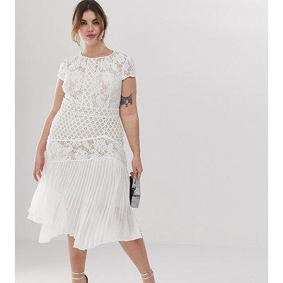 Coast Plus Wendy lace shift dress
