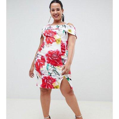 Coast Plus Rose Bloom Print Pencil Dress