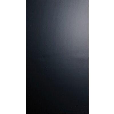 24.8 x 49.8cm Ceramic Field Tile in Glossy Black