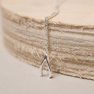 Estella Bartlett Silver-Plated Wishbone Necklace