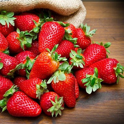 Everbearer Strawberry