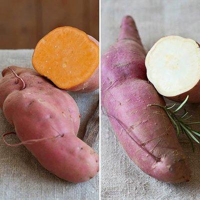 Sweet Potato Growing Kit