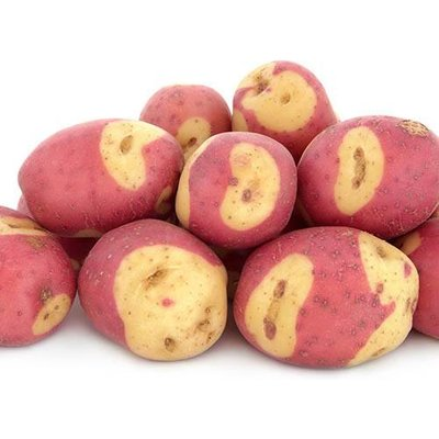 "Seed Potato Albert Bartlett ""Apache"" 2Kg"