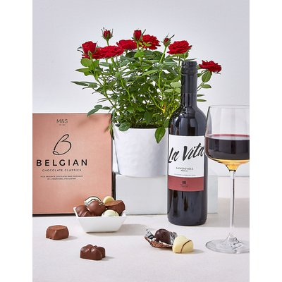 Red Wine, Chocolates and a Rose Plant