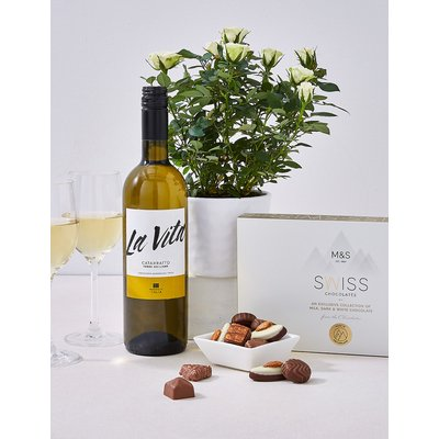 White Wine, Chocolates and a Rose Plant