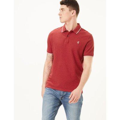 Cotton Hummingbird Motif Polo Shirt red, Chilli