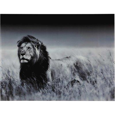 Lion Picture, Plexiglas® 161x123
