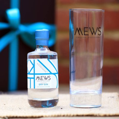 Gin And Glass Gift Set