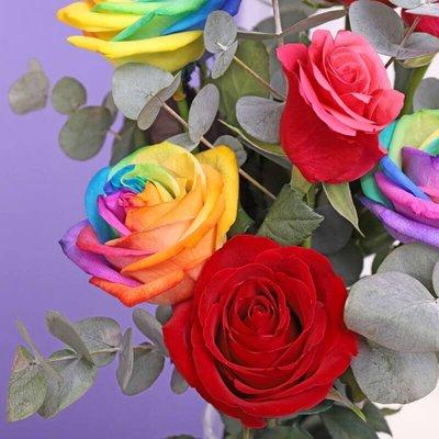 Letterbox Rainbow Flowers