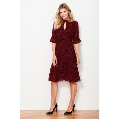 Black & Red Print Pleated Dress