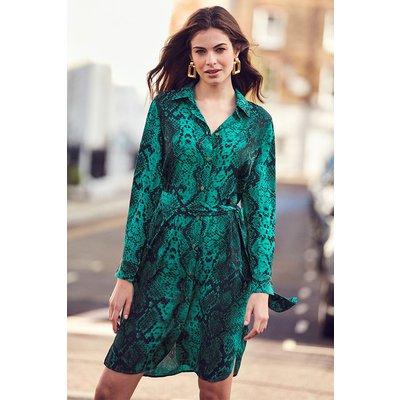Green Snake Print Belted Shirt Dress