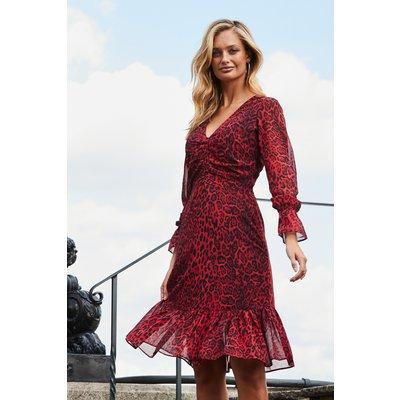 Red Leopard Print Fit & Flare Dress