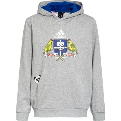 Adidas Hoodie grau | ADIDAS SALE